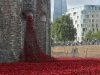 Weeping window with Shard