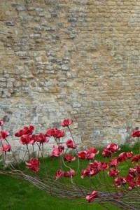 Poppies Wave lincoln By Paul Cummins artist and Tom Piper Designer